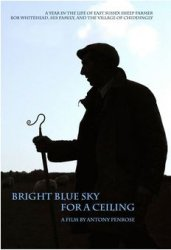 a bright blue sky for a ceiling dvd